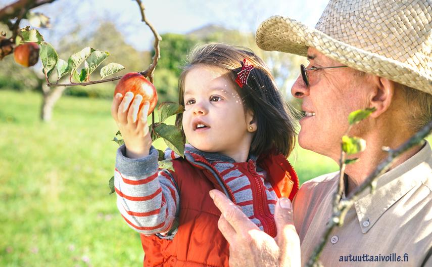 Älä uuvu – pyydä isovanhemmat apuun!