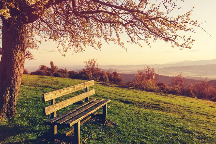 Aivot kaipaavat rauhaa ja hidastamista